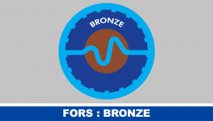 h-e-services-news-fors-bronze