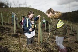 the-tree-planting-fortnight-seemed-like-a-great-opportunity