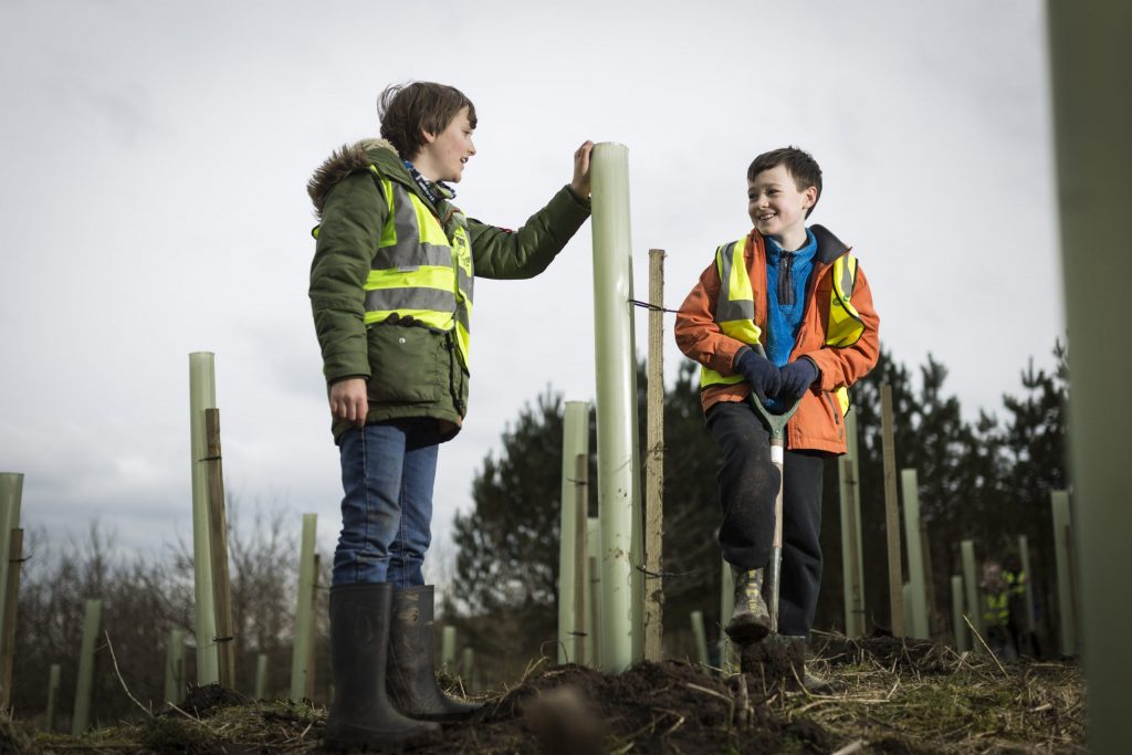 Working with the Woodland Trust to offset carbon emissions