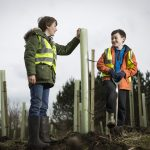 the-woodland-trust-is-holding-a-tree-planting-fortnight-from-4-15-march